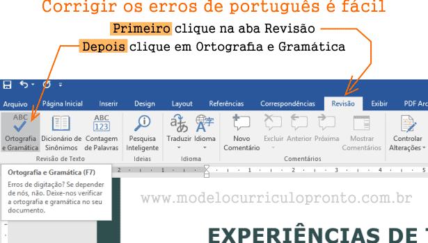 como corrigir erros de português no currículo usando o word